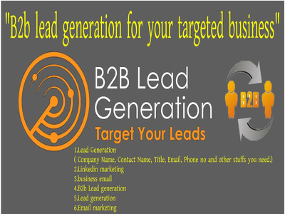 B2b lead generation provide super targeted leads,100 leads.