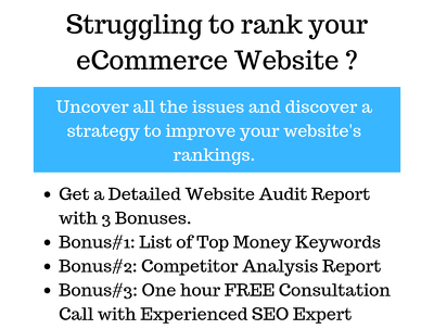 ECommerce Website Audit with Keywords and a Consultation Call