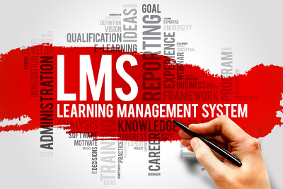 Provide one hour of one-on-one Canvas LMS technical consulting
