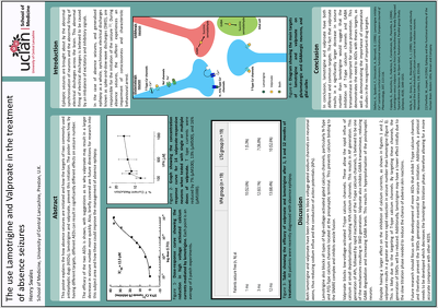 Create an academic poster for a conference