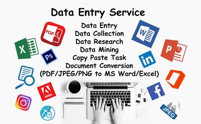 Do data entry/web research/document conversion maximum 2 hour