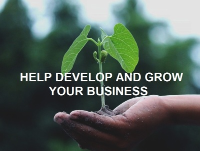 Provide business growth strategy session for 30 minutes