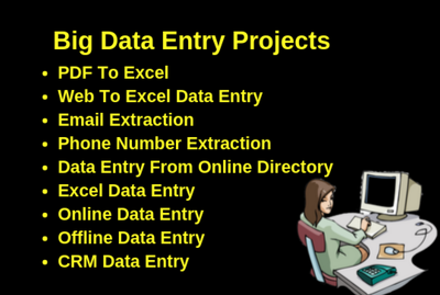 Do data entry work 500 Entries