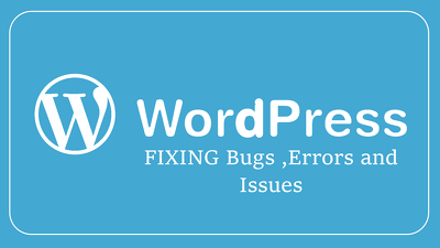 Fix WordPress website bugs