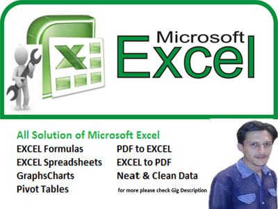 Help Microsoft Excel Issues,Formula, Spreadsheet, PDF to Excel