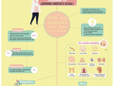 Design a creative infographic