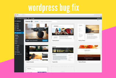 Fix any kind of wordpress error,bug,css issues etc