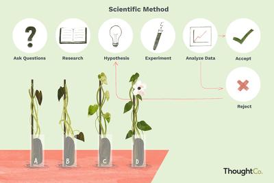 Do scientific writing