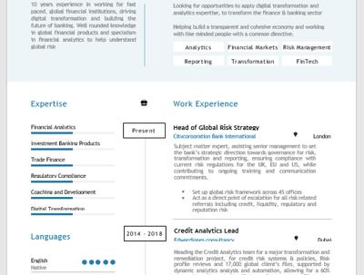 Resume, CV review and rewrite, with bonus key word opti