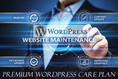 Solve any WordPress  error or issue