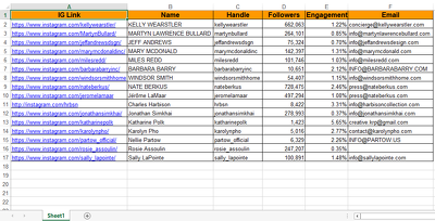 Give You Top 100 Social Media Influencers Info for your brand