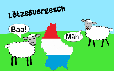 translate 300 words from English or German to Luxembourgish