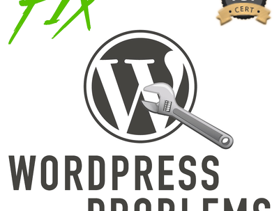 Perform 60 min of WordPress website maintenance & updates