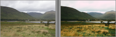 Colour correct 5 images in Lightroom/Photoshop