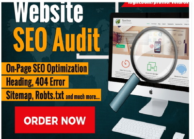 Do Advanced Website On Page SEO Audit Report In 24 Hours