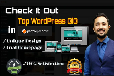 Create professional wordpress website, landing page, responsive