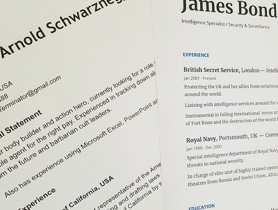 review, format and rewrite CV/Resume
