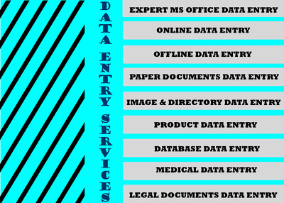 Do Any Kind of Data Entry and Web Research for 3 hours