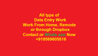 Do 1000 to 2000 Data Entries In all Formats on MS OFFICE.