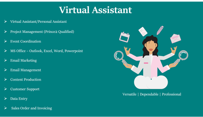 Be your Virtual Assistant for an 1 hour