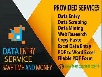 Do any kind of data entry work for 1 hour and web research