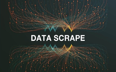 data Scraping or data mining from an entire website / directory