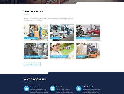 Make you a stunning business website for $100