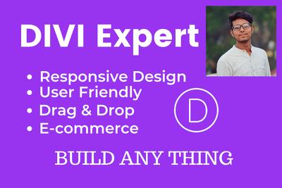 Design amazing professional website or blog using divi theme