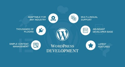 i will design and develop a stunning wordpress website