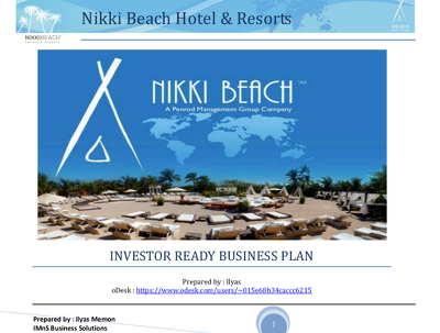 Produce Investment Ready and Bespoke Business Plan / Pitch Deck