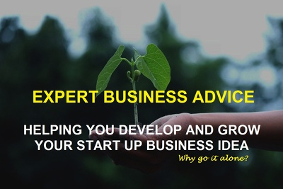 Get 1 hour business advice to develop and grow your startup