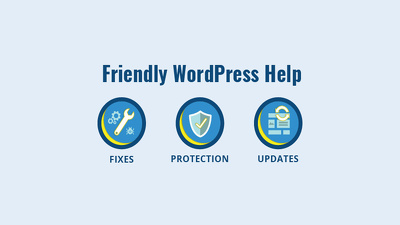Get any WordPress Issue/Problem fixed black friday deal