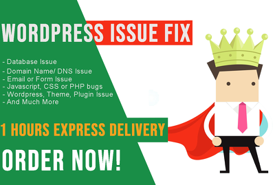 Fix your wordpress errors, problems within 1 hours