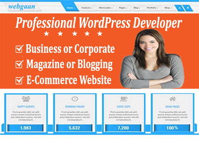 Build Responsive, SEO friendly & Fast Loading WordPress Website
