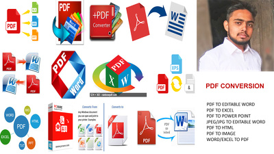 CONVERT PDF TO WORD WITH IN 8 HOURS
