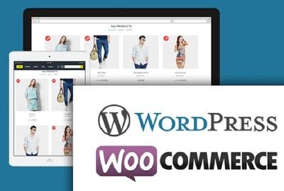 Design wordpress ecommerce and business website