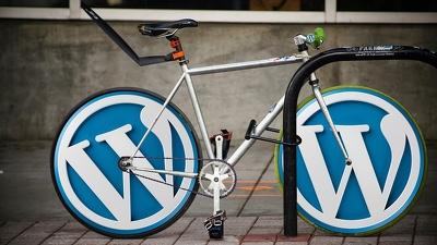 Customize Any Wordpress Themes (Advanced Customization)