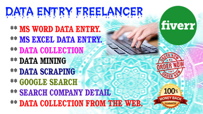 Do data entry by MS Excel, MS Word, MS Access, PDF TO WORD