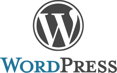 Create professional WordPress website for you.