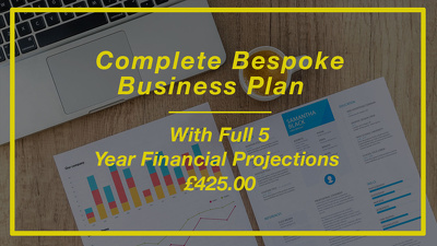 Offer you a complete bespoke business plan