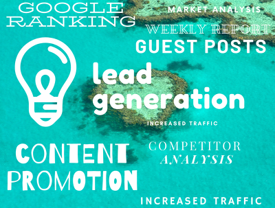Generate a weekly report and manual configuration for SEO