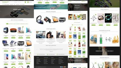 Develop a Full Website in Wordpress