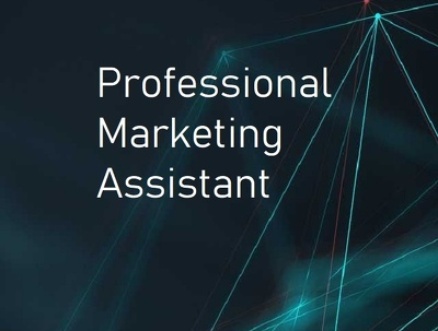 Sales and Marketing Assistant for 2 days