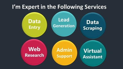 Be your Virtual assistant for 6 hrs Data Entry Work