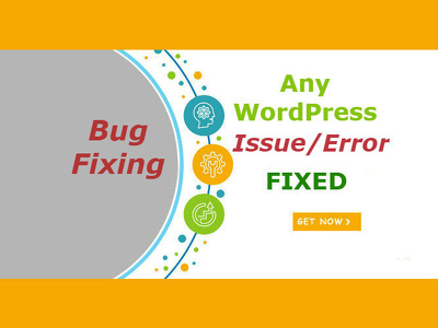 Get any WordPress Issue Problem fixed