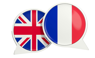 Translate 600 words from English to French within a day