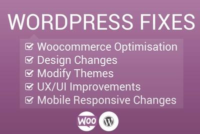 Provide 1Hr Worth Of WordPress Website Design Fixes