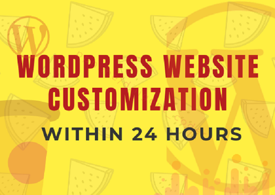 Get WordPress Website Customization