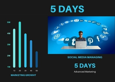 Manage four social media platforms for five days