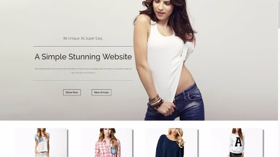 Build professional e-commerce wordpress website/online store